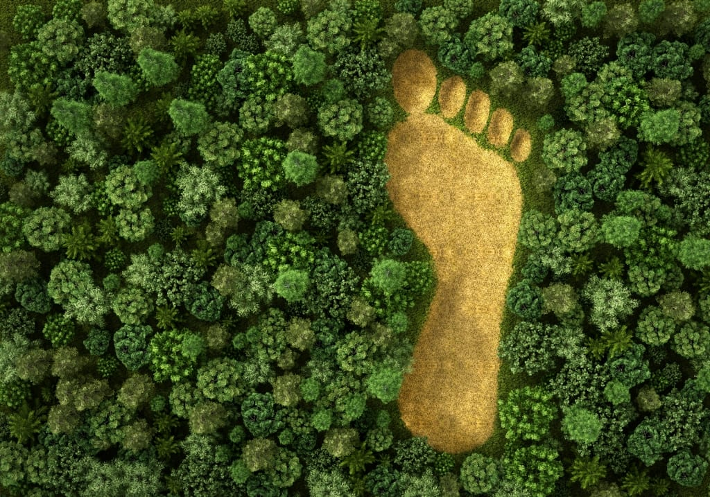 Grüner Fussabdruck - Umwelt - Landhotel Hallnberg