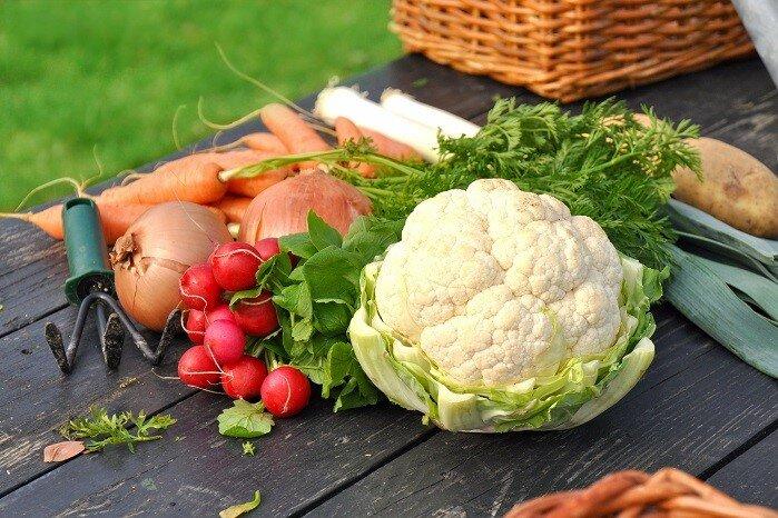 nachhaltige ernährungsberatung landhotel hallnberg